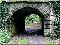 SJ9922 : Railway arch, Great Haywood, Staffordshire by Roger  Kidd