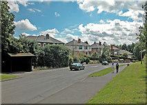 SJ4068 : Mill Lane by Dennis Turner