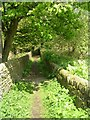 SE0337 : Footpath - Ebor Lane by Betty Longbottom