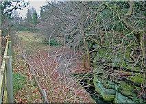 SJ4068 : Former mill site by Dennis Turner