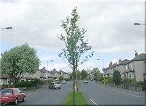 SE1735 : Norman Avenue - Leeds Road by Betty Longbottom