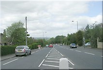 SE1734 : Valley View Grove - Idle Road by Betty Longbottom