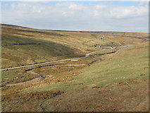 NY8944 : The valley of Rookhope Burn (3) by Mike Quinn