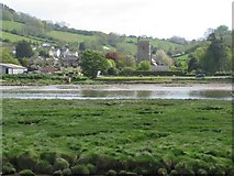 SY2591 : Axmouth and its church across the River Axe by Sarah Charlesworth