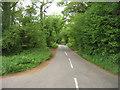 SU6952 : Hampshire Lane by Sandy B
