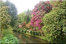 SJ8383 : The Secret Garden, Quarry Bank Mill by Trevor Harris