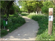 TQ3187 : Start of Parkland Walk by Oxyman