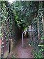 SJ7864 : The Public Footpath near Hazelshaw Farm by Elliott Simpson