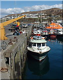 NM6797 : Mallaig Harbour by Russel Wills