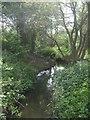 SJ9801 : Sneyd Brook by John M