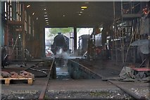 NZ8204 : NYMR Engine Sheds by Mick Garratt