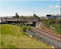 SJ9299 : Richmond Street Bridge by Gerald England