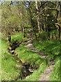 NS2884 : Footpath to Tom na h-Airidh, with Glennan Burn by Lairich Rig