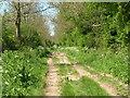 TA0758 : Green Lane Towards Nafferton by JThomas