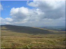 NY6645 : Rough pasture above Gilderdale by Andrew Smith