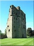 SK3616 : Ashby de la Zouche Castle by JThomas