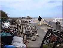 SS2006 : Bude, Summerleaze beach by Tom Jolliffe