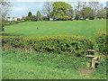 SK3852 : Footpath near Pentrich by Alan Murray-Rust