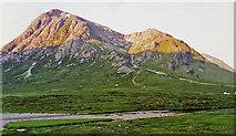 NN2256 : Buachaille Etive Mor from near Altnafeadh by wfmillar