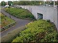 NZ1965 : Pedestrian Underpass by Darrin Antrobus