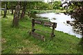 SJ6745 : Village stocks and pond by Dave Dunford