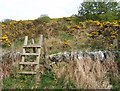 NS0459 : Stile leading to site of ancient chapel by Barbara Carr