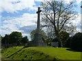 NT2675 : Cross of Sacrifice, Rosebank Cemetery by kim traynor