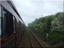 TM4598 : Looking towards Lowestoft by Ashley Dace