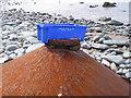 SH5910 : It's flotsam but is it art? by E Gammie