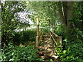 TL0899 : Footbridge on the Nene Way by Michael Trolove