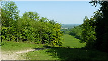 TQ2652 : View From the North Downs Way, Gatton Park by Peter Trimming