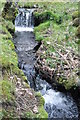 SH6030 : Waterfall NW from Dinas Camp site by john booth