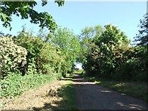 SK6543 : Trent Lane from the riverside by johnfromnotts