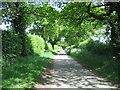 TF8030 : Lane from Bagthorpe to Rudham near Frizzleton Farm by Nigel Jones