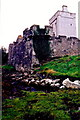 C0832 : Doe Castle - Exterior view of castle walls & tower by Joseph Mischyshyn