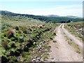 NR7872 : Moorland track by Patrick Mackie