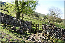 NY1807 : Kissing gate on the path up to Lingmell Gill by N Chadwick