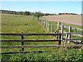 NU0106 : Fence near High Trewhitt by Oliver Dixon