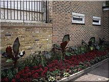 TQ2677 : Flowerbed in Westfield Park Chelsea by PAUL FARMER