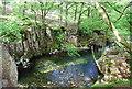 NY1700 : Rocky pool, River Esk by N Chadwick