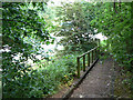 SK5636 : Steps down to Wilford Lane by Alan Murray-Rust