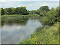 SK5536 : River Trent by Alan Murray-Rust