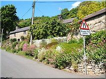 SK2563 : A fine roadside garden in Stanton Lees by Peter Barr