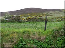C4454 : Umgall Townland by Kenneth  Allen