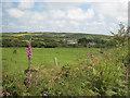 SW7432 : Goodagrane Farm by Rod Allday