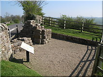 NY5764 : Pike Hill Tower on Hadrian's Wall by Mike Quinn