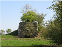 NY5764 : Lime kiln at Northrigg Hill Farm (2) by Mike Quinn