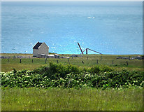 SY6869 : View to the southern side of Portland Bill Road by Chris Gunns