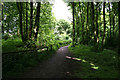 SK5646 : Footpath in Bestwood Country Park by Kate Jewell