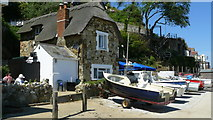 SZ5881 : Fisherman's Cottage, Shanklin Chine by Peter Trimming